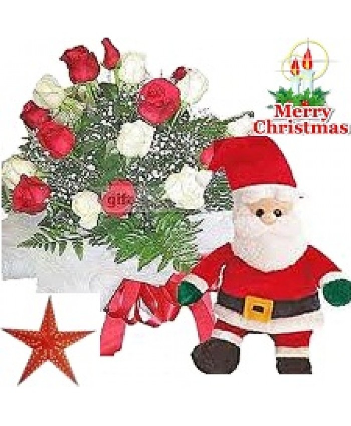Christmas Special Mix Roses