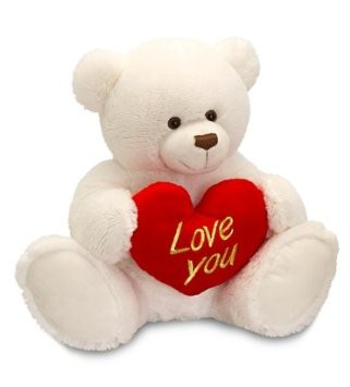 Message Teddy