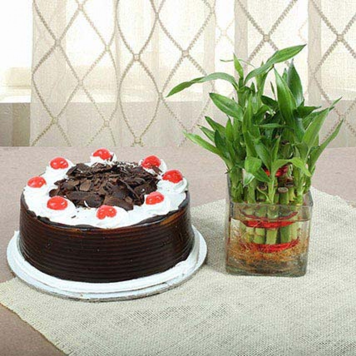 Combo Gift Of 2 Layer Lucky Bambo Plant And Half Kg Back Forest Cake