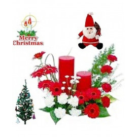 Christmas Special Designer Arrangement