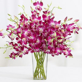 Orchid Vase Arrangements