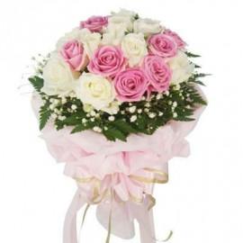 Fanshi Roses