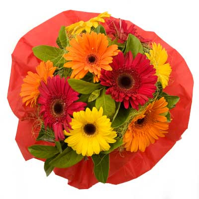 Bright Mix Gerberas