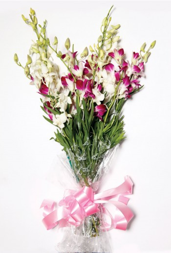 Loving Orchird -- A Bunch Of 5 Pink And 4 White Orchid.
