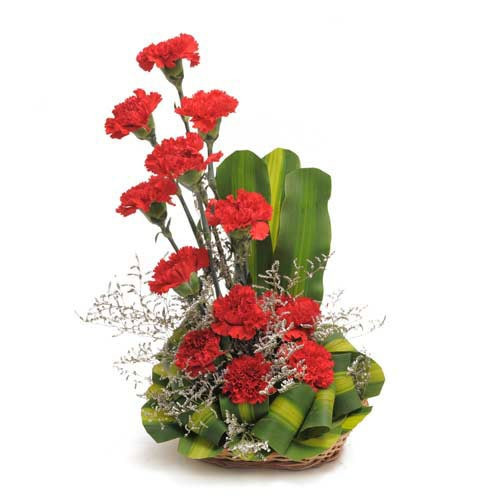 Basket Arrangement Of 12 Red Carnations With Dracaena Leaves